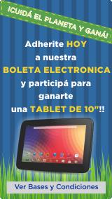 Boleta Electronica 2015